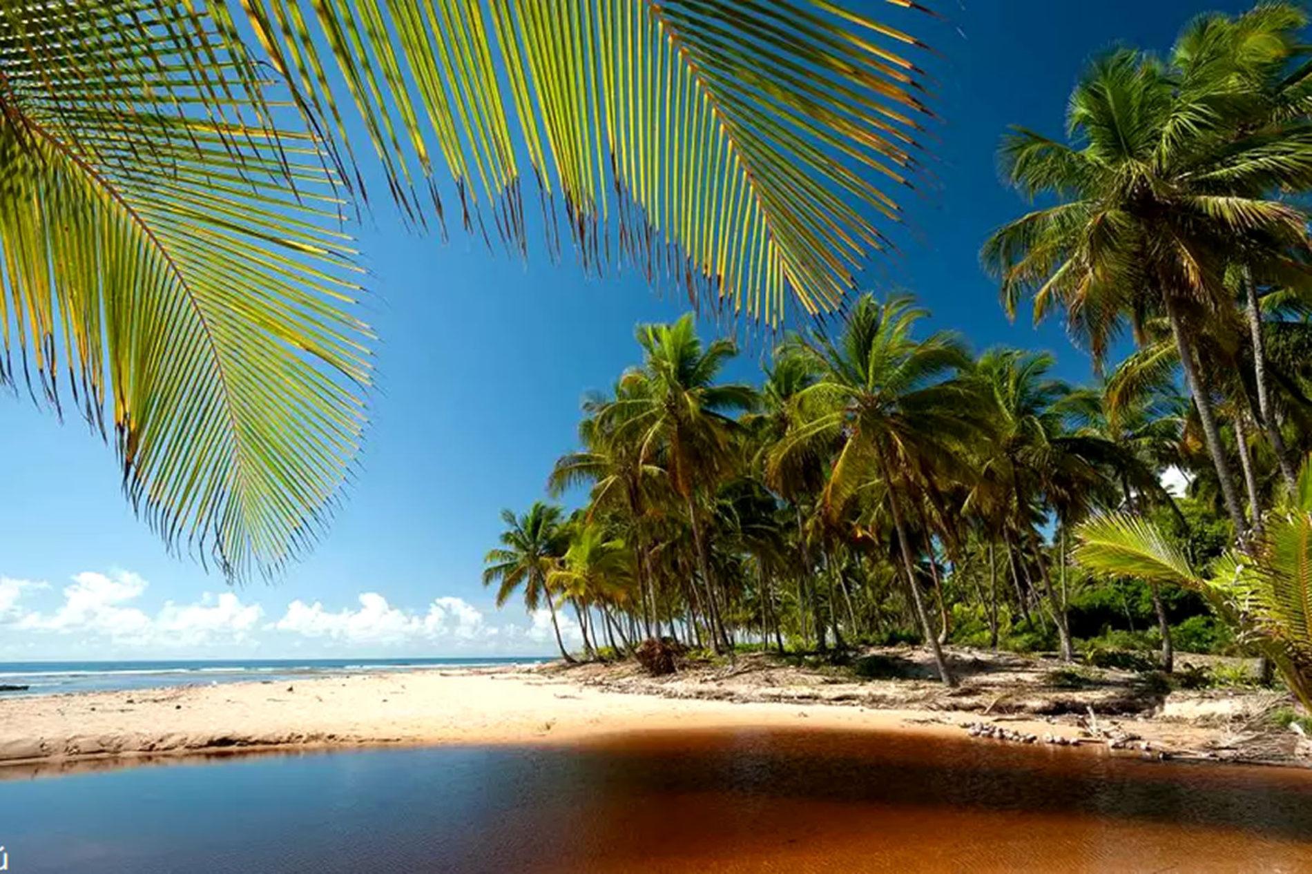 Pacotes 2021 para principais destinos da Bahia